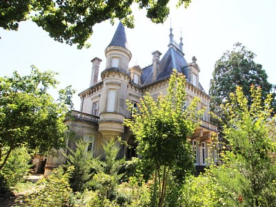 CHATEAU A VENDRE - CUISERY - 460 m2 - 495 000 €